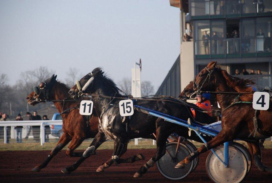 Courses-Hippodrome–2–2