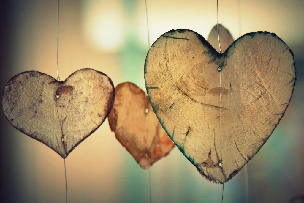 coeur bois amour st valentin